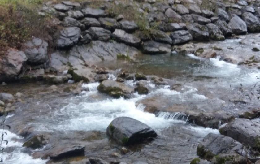 Location de vacances - Studio à Morzine - balade pres des rivieres et torrents