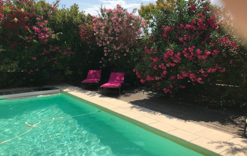 Location de vacances - Mas à Le Pin - vue piscine depuis la maison