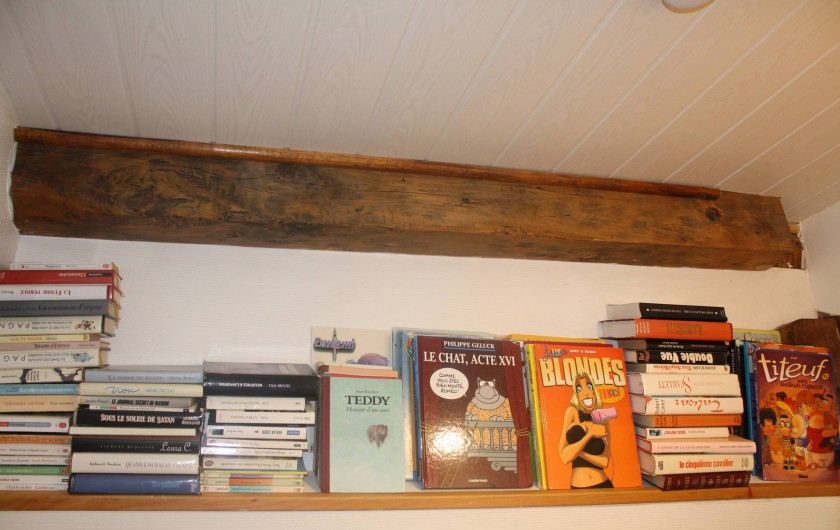 Location de vacances - Gîte à Lafrançaise - A disposition dans votre gîte un peu de lecture, adulte et enfants.