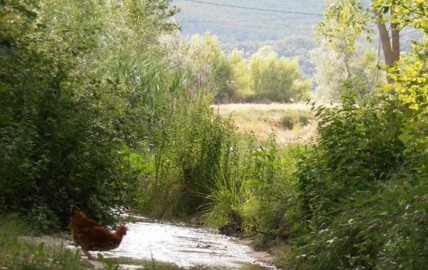 Location de vacances - Gîte à Marsanne - gite lorette scoot nomad location vacances tourisme marsanne 2