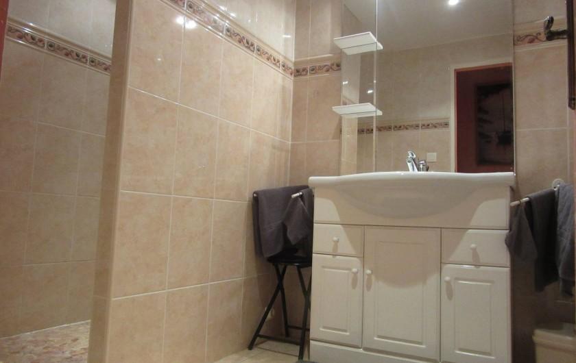 Location de vacances - Gîte à Duffort - Salle de bain