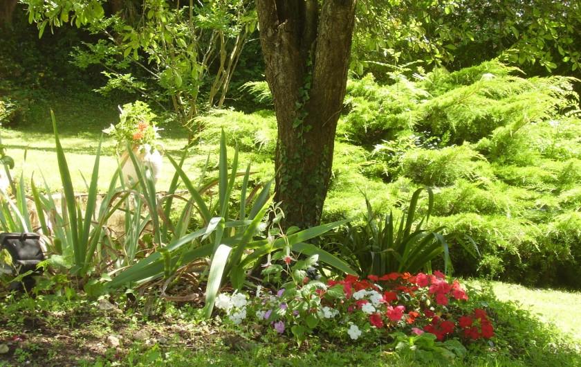 Location de vacances - Chambre d'hôtes à Velluire - Jardin fleuri