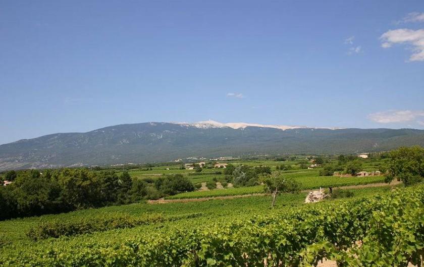 Location de vacances - Appartement à Carpentras - Mont Ventoux