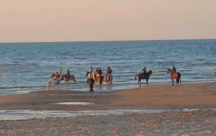 Location de vacances - Chambre d'hôtes à Bréville-les-Monts - plage de merville Franceville