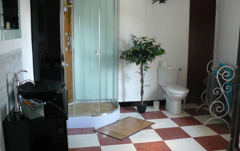Location de vacances - Chambre d'hôtes à Villeneuve-lès-Béziers - Chambre du 2ème étage : la salle de douche