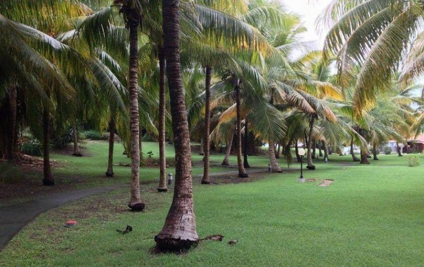 Location de vacances - Appartement à Saint-François - parc