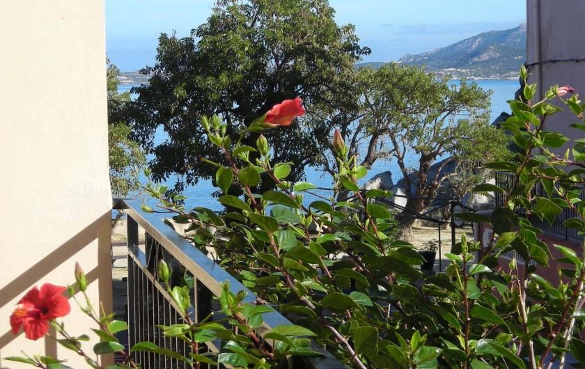 Location de vacances - Villa à Calvi - Petite vue mer du balcon
