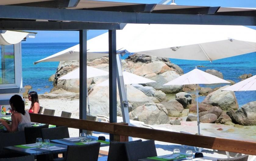 Location de vacances - Villa à Calvi - Paillote sur la plage.