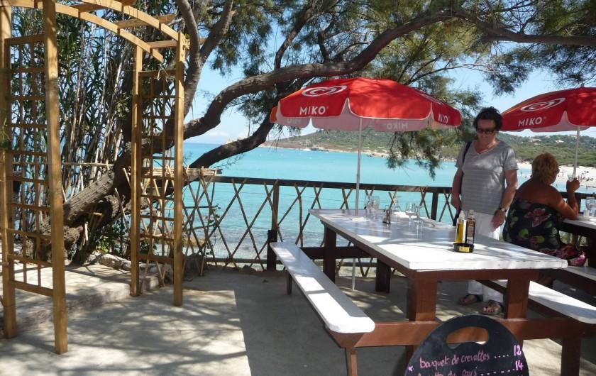 Location de vacances - Villa à Calvi - Paillote U Junquidu.