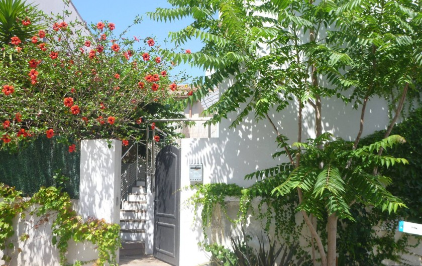 Location de vacances - Villa à Calvi - Notre entrée sur le jardin de 60 m²,fleuri et ombragé