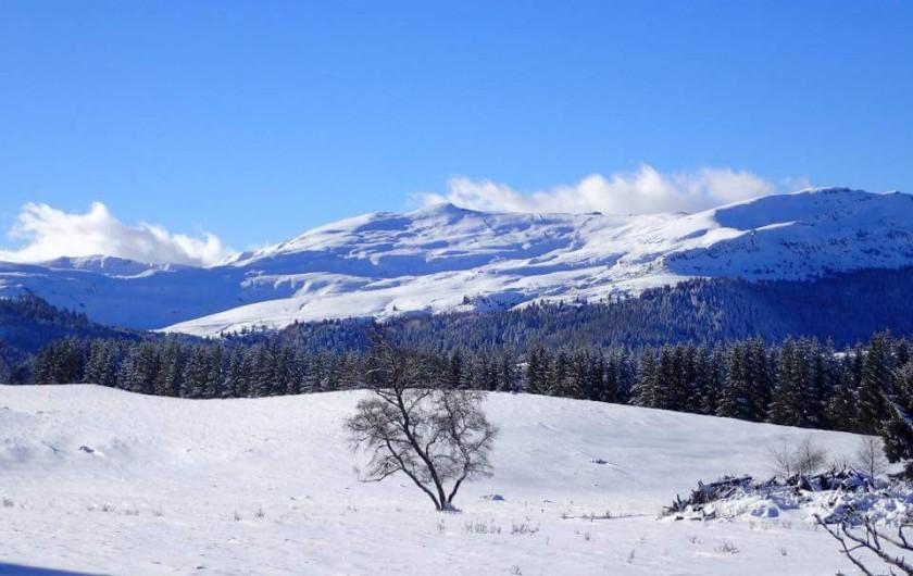 Location de vacances - Villa à Valuéjols - Massif du plomb du Cantal