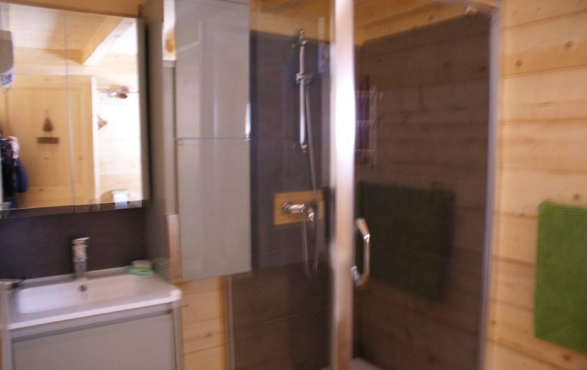 Location de vacances - Chalet à Saint-Paul-sur-Ubaye - salle d'eau , douche, vasque et meubles de rangement. 1 wc .