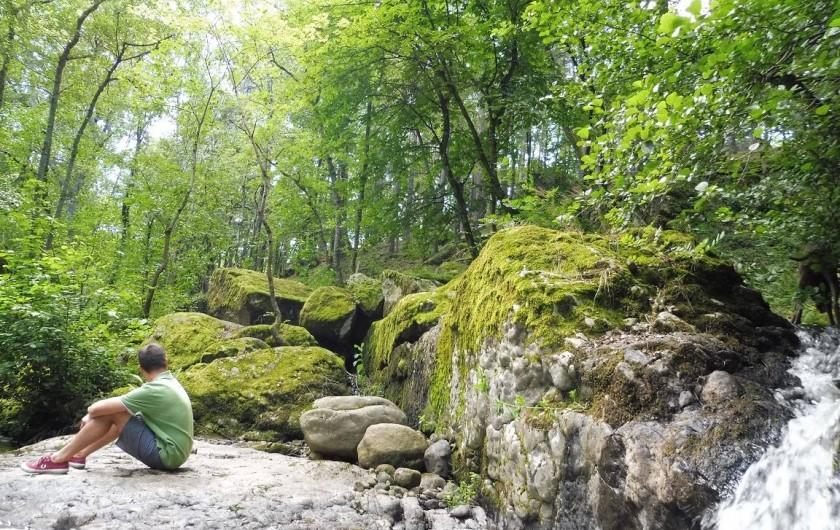 Location de vacances - Gîte à Vernoux-en-Vivarais - Un coin de verdure au bord duquel coule une petite rivière