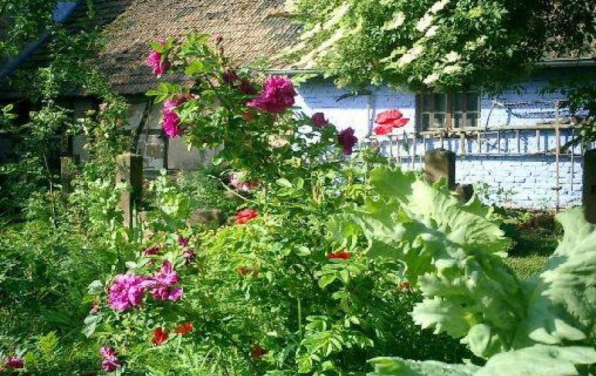 Location de vacances - Gîte à Uttenhoffen
