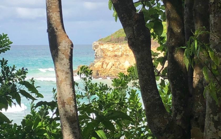 Location de vacances - Villa à Sainte-Anne - petite ballade autour de la villa...