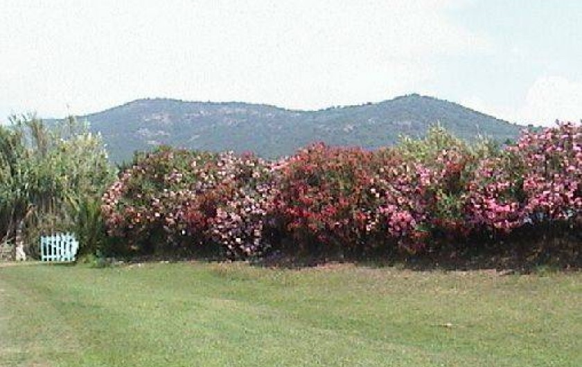 Location de vacances - Bungalow - Mobilhome à Cargèse