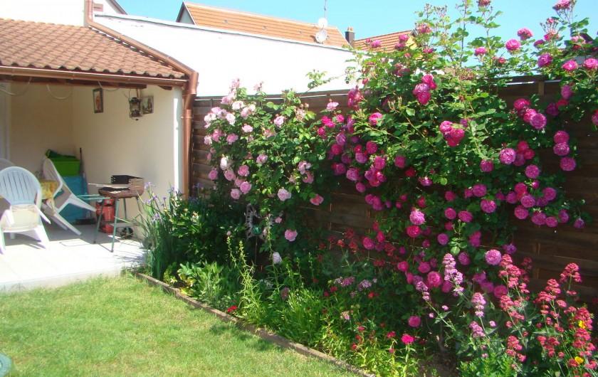 Location de vacances - Gîte à Kintzheim - Jardin