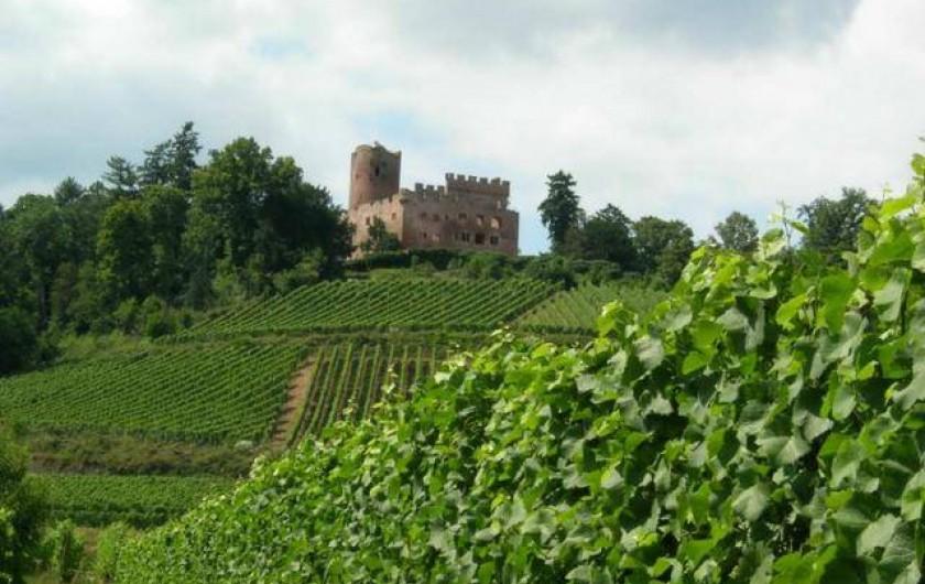 Location de vacances - Gîte à Kintzheim - Château de Kintzheim