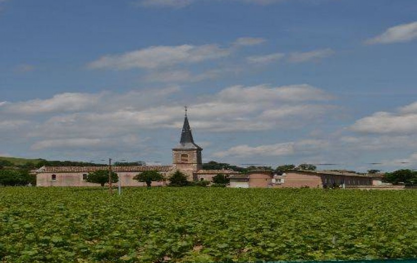 Location de vacances - Gîte à Odenas - l'église du village vue du gite domaine du barvy