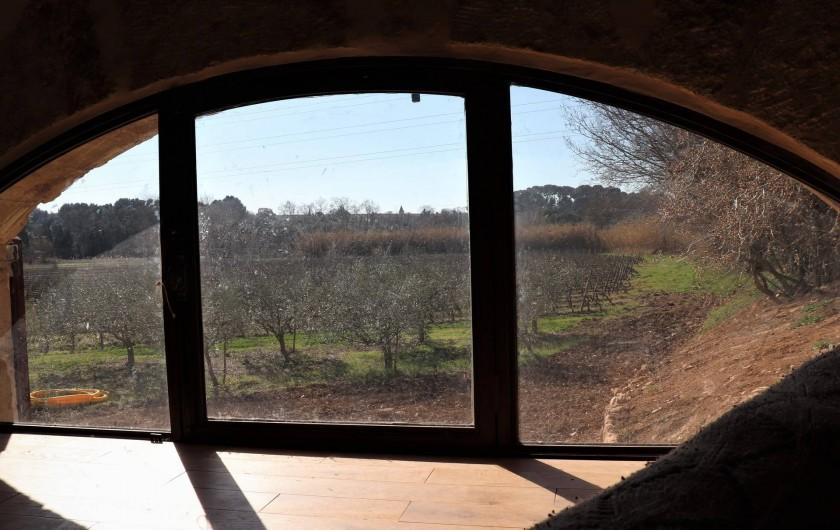 Location de vacances - Gîte à Béziers - Vue sur les vignes et les oliviers
