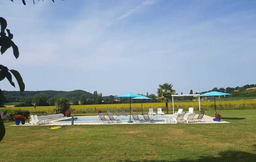 Location de vacances - Gîte à Roquecor - Piscine au milieu des champs