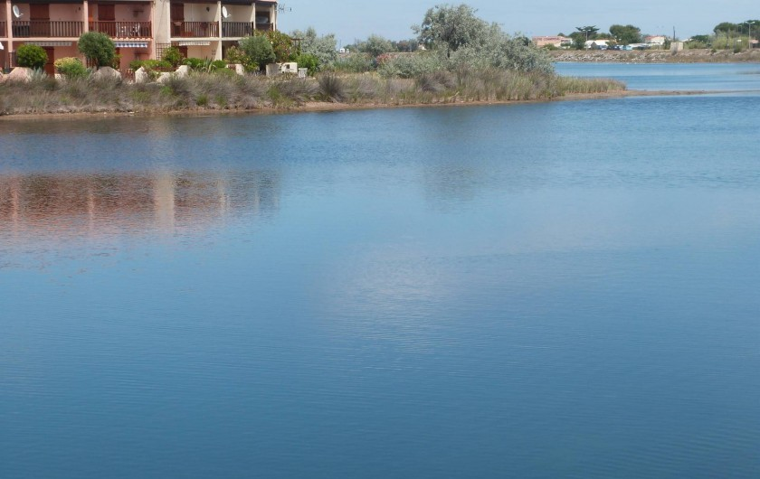 Location de vacances - Villa à Gruissan Plage - la résidence au bord de l'étang