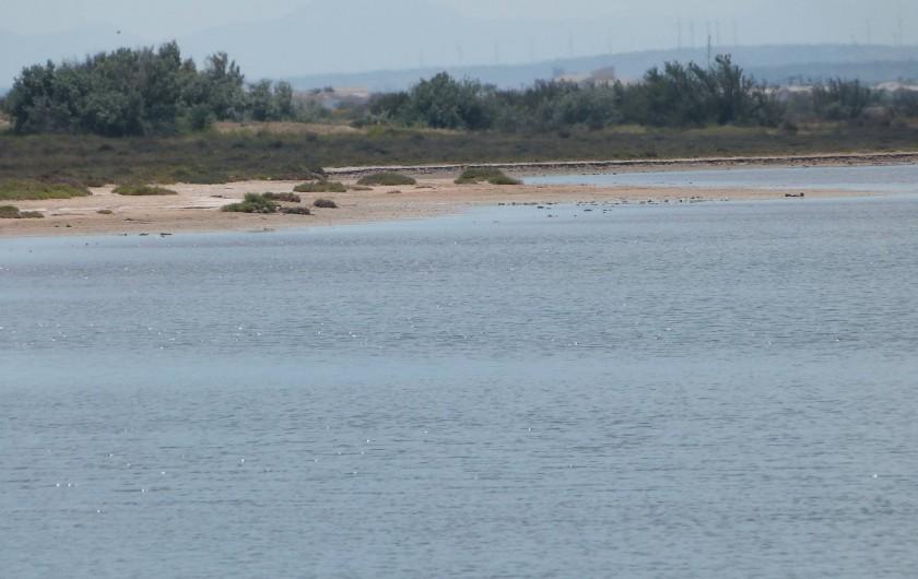 Location de vacances - Villa à Gruissan Plage - les étangs