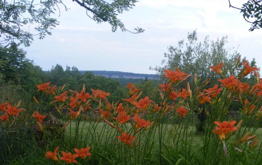 Location de vacances - Gîte à Saint-Antonin-Noble-Val - Des vues imprenables sur les gorges de l'Aveyron