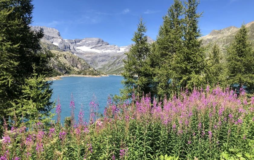 Location de vacances - Chalet à Chamonix-Mont-Blanc - ...Randonnées d'été...