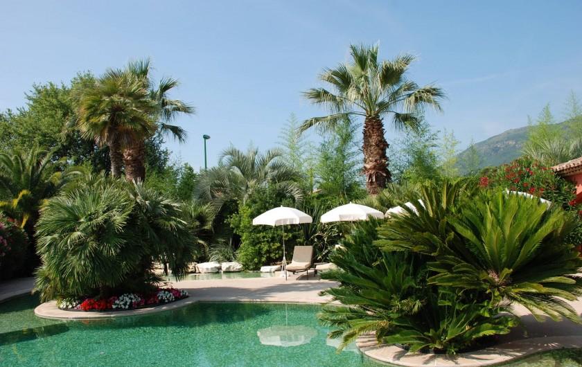 Location de vacances - Villa à Carros - Piscine-lagon unique au milieu d'une palmeraie de collection