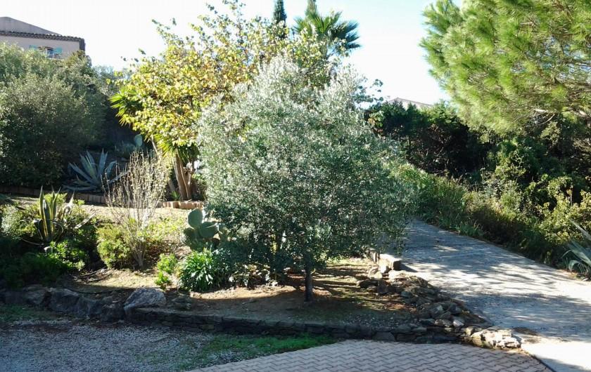 Location de vacances - Villa à Sainte-Maxime - Jardin à l'arrière de la villa.