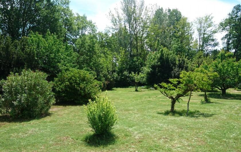 Location de vacances - Gîte à Orgon - Un petit peu du jardin
