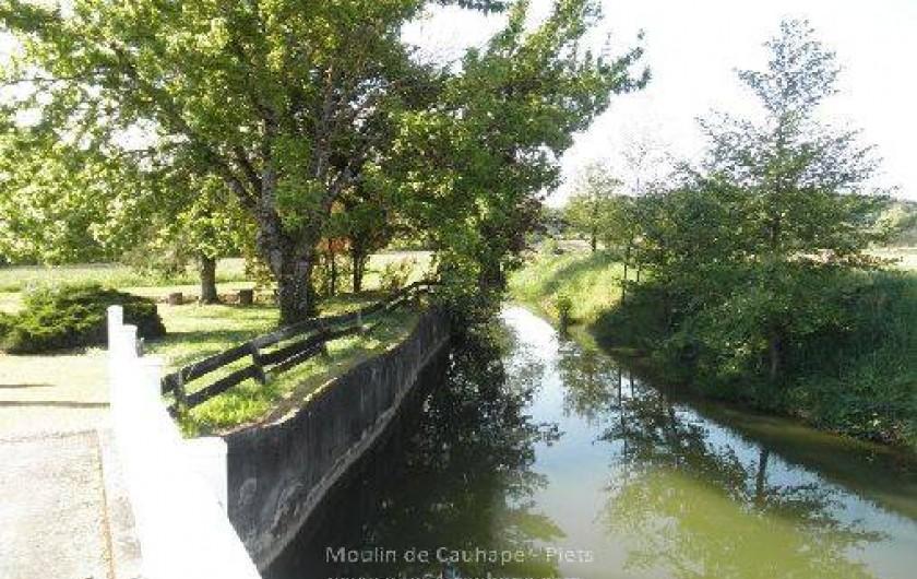Location de vacances - Gîte à Piets-Plasence-Moustrou - Le bassin, mais l'arbre n'existe plus...