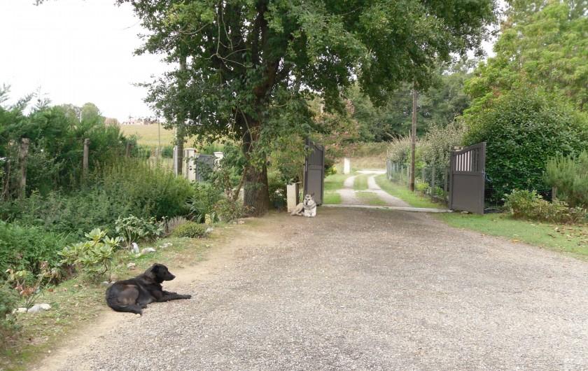 Location de vacances - Gîte à Piets-Plasence-Moustrou - L'entrée depuis chez moi pour aller au gîte
