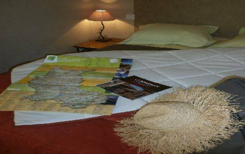 Location de vacances - Chambre d'hôtes à Saint-Haon-le-Vieux