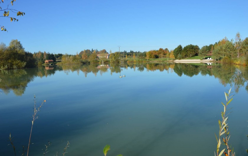 Location de vacances - Gîte à Varennes-Changy - Étang de 2 hectares avec possibilité de pêcher