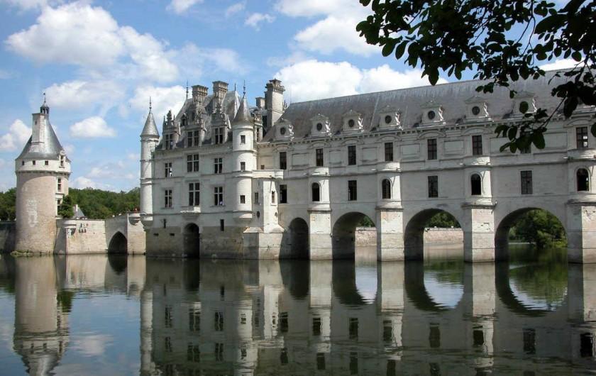 Location de vacances - Gîte à Lussault-sur-Loire - Château de Chenonceau