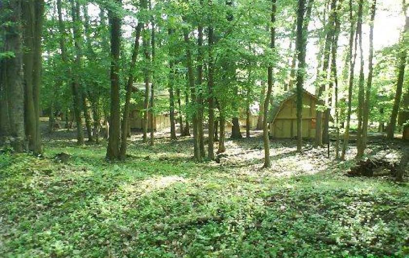 Location de vacances - Gîte à Crisolles - Au coeur de la forêt