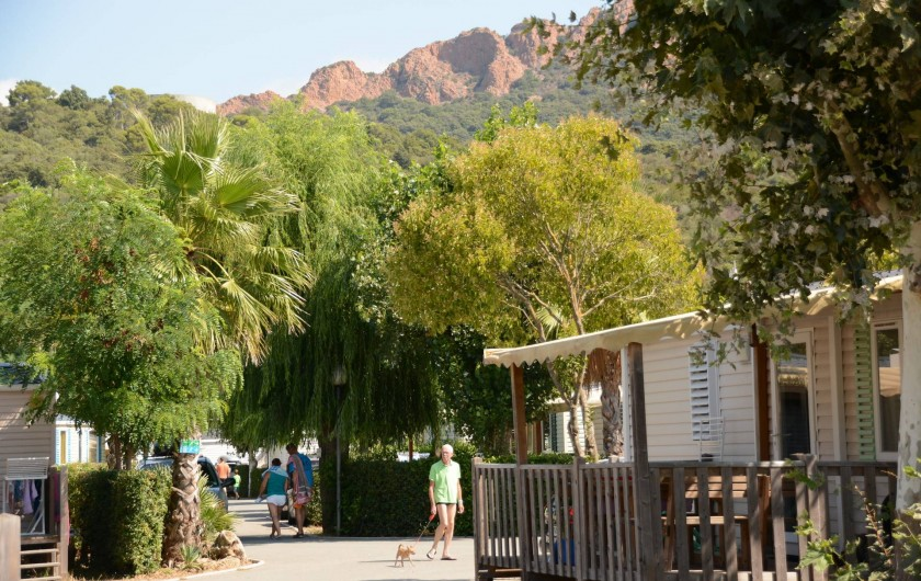 Location de vacances - Bungalow - Mobilhome à Agay