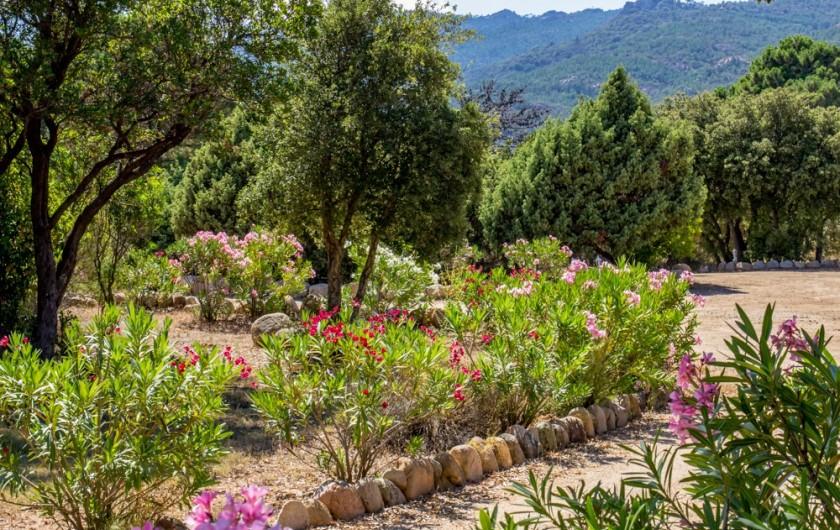 Location de vacances - Villa à Porto-Vecchio - LE PARKING