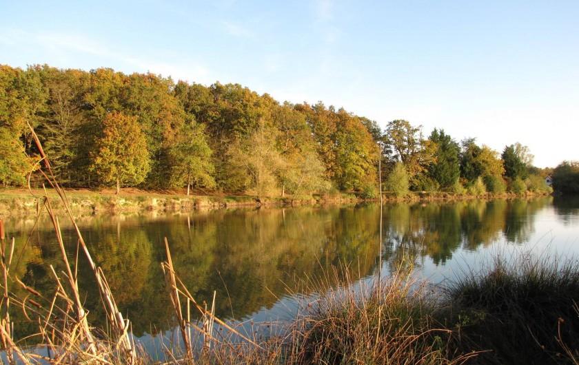 Location de vacances - Camping à Onzain - une partie pour la pêche en eau douce,