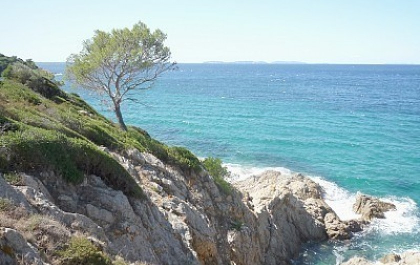 Location de vacances - Mas à La Croix-Valmer - Sentier littoral