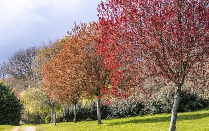 Location de vacances - Camping à Clohars-Carnoët - Panel de couleur