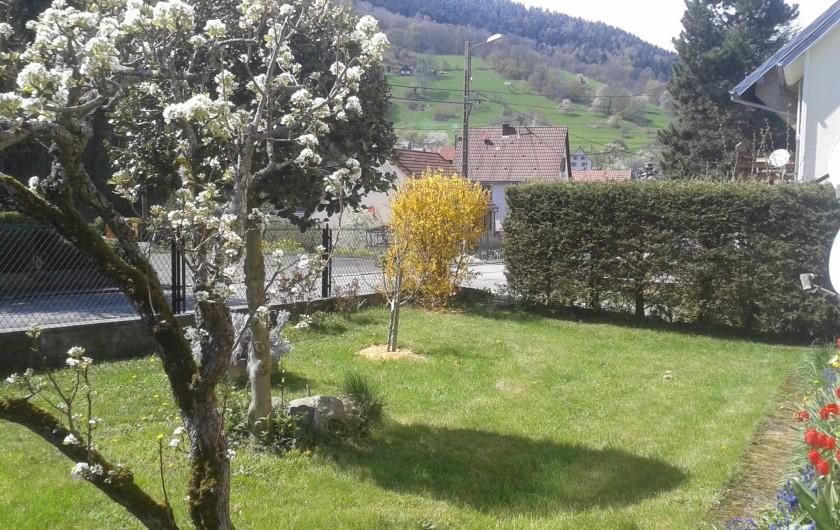 Location de vacances - Gîte à Sondernach - Devant la maison ce printemps