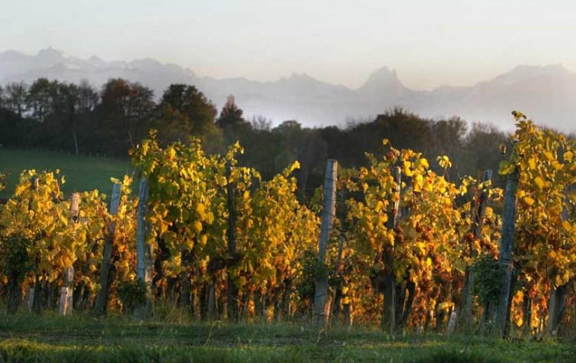 Location de vacances - Chambre d'hôtes à Monein - Les Vignobles