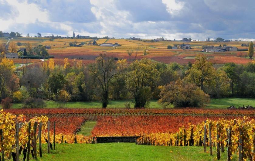 Location de vacances - Chambre d'hôtes à Monein - Peu importe la saison, le paysage reste magnifique à Monein