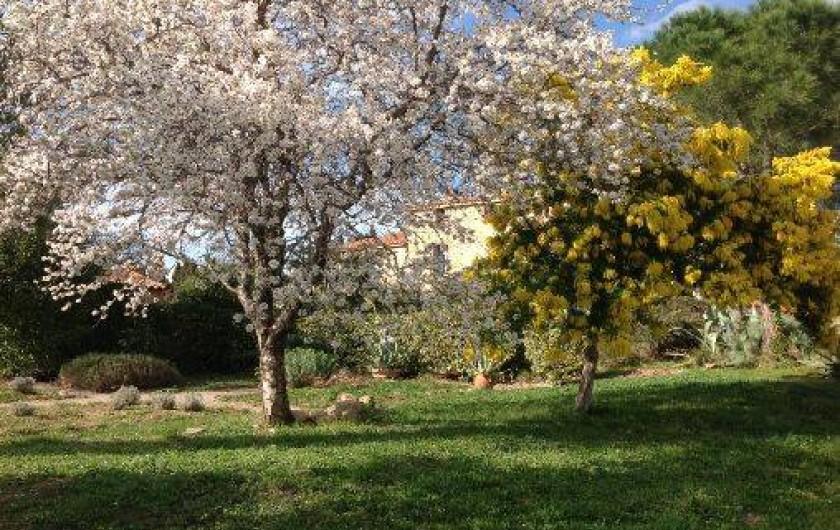 Location de vacances - Chambre d'hôtes à Camélas - Parc avec nombreux arbres