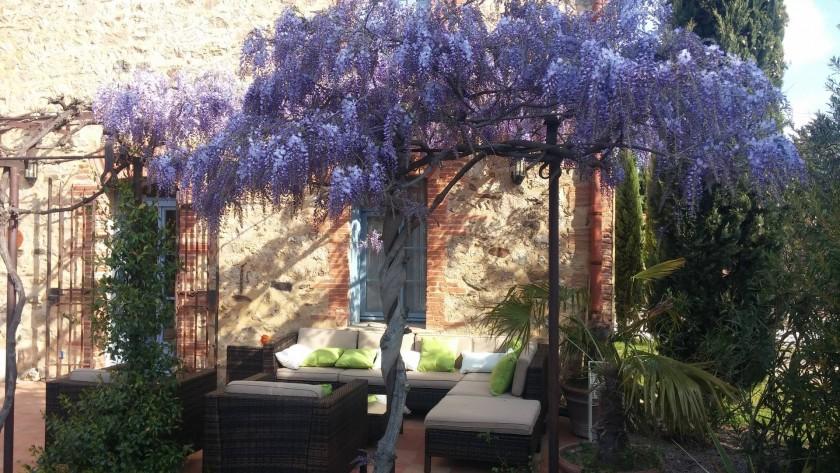 Terrasse en fleur avec glycines