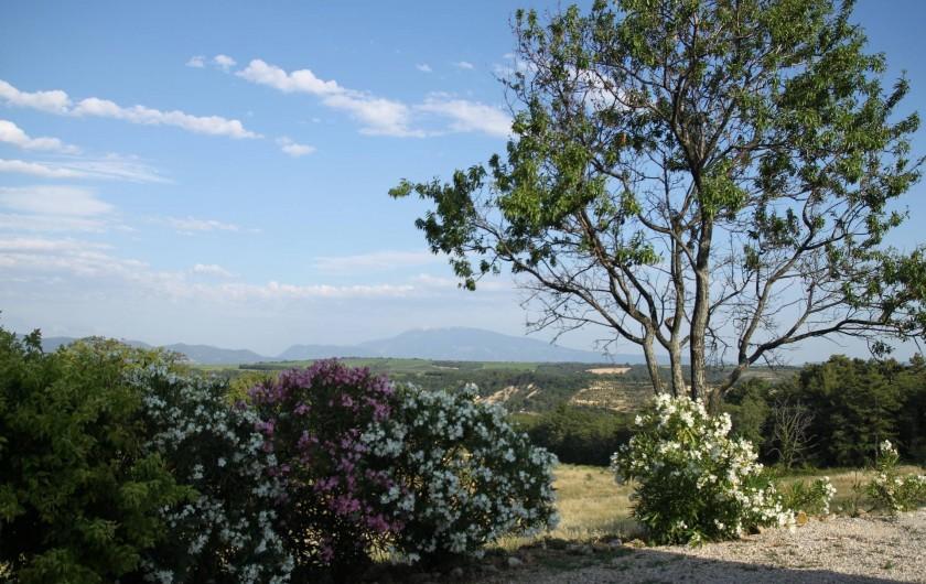Location de vacances - Mas à Valréas - Vue depuis la maison