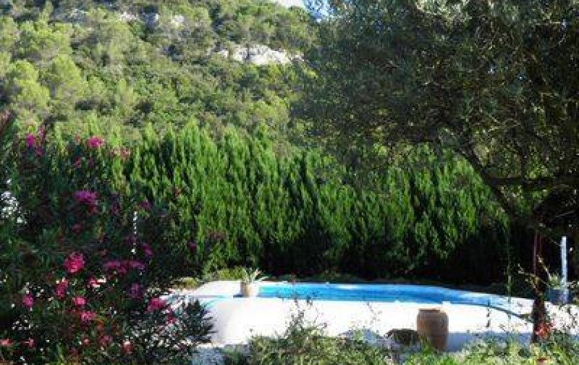 Location de vacances - Villa à Saint-Michel-d'Euzet - Piscine de 8m x17m